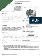 Vena Coronaria Estomáquica - Wikipedia, La Enciclopedia Libre