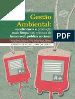 gestao_ambiental_ecoeficiencia_producao_limpa_1ed.pdf