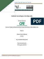 Ejemplo de Reporte Final de Servicio Social (1)