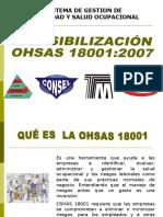 Sensibilizacion de Oshas 18001simi 1