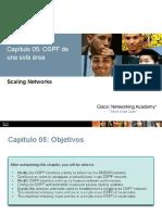 Configuraciones Avanzadas en OSPF de una sola área