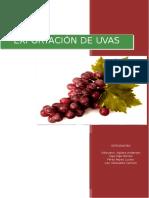Exportación de Uvas