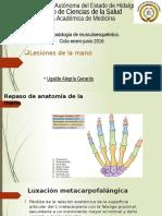 Lesiones de Mano; Unidad IX