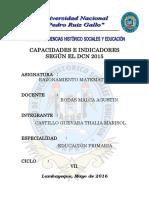 Capacidades e Indicadores Según El Dcn 2015