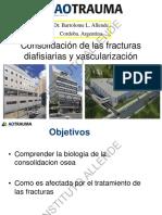Consolidacion de Las Fracturas Diaficiarias