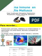 Sistemainmuneenmollusca 150520004432 Lva1 App6891