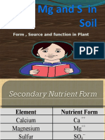 CA Mg and s in Soil