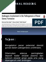 Pengaruh Androgen Pada Patogenesis Pembentukan Batu Ginjal