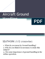 Ground handling official