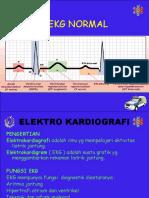 01.EKG Normal New