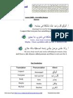 690 ArabicPod a AUD 2