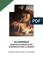 XII Domingo Después de Pentecostés - Sugerencia para la Homilía