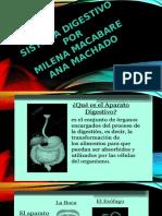 320377149-Diapositiva-El-Sistema-Digestivo.pptx