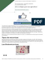 Las Micorrizas Alternativa Ecológica Para Una Agricultura Sostenible (Página 2) - Monografias