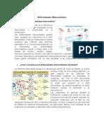 Enfermedades Mitocondriales - copia.docx