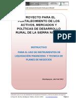 PSN_INSTRUCTIVO_INSTRUMENTOS_LIQUIDACION_PDN.pdf