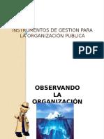 Instrumentos de Gestión Pública-CV-74