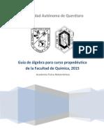 Guía de Matemáticas Propedéutico 2015