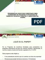 Presentacion Que Es El Pinpep