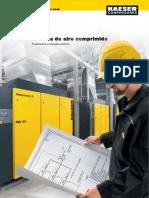 P-2010-CL-tcm54-6752.pdf