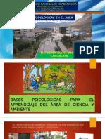 Bases Psicológicas Del Area de Ciencia y Ambiente