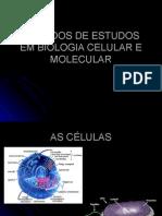 Biologia PPT - Biologia Celular 2