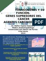 Clase 10. Agentes Carcinogenicos y Protooncogenes