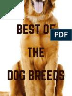 Best of Dog Breeds