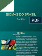 Biologia PPT - Botânica - Biomas do Brasil e Cerrado