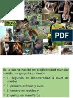 Biodiversidad de Colombia