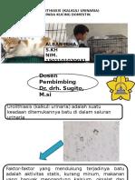 TUGAS MANDIRI PRESENTASI.pptx