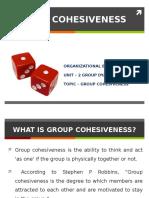 Unit - 2 Group Cohesiveness (GROUP DYNAMICS)