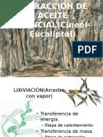 aceite esencial eucalipto