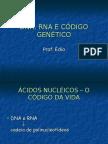 Biologia PPT - DNA e RNA