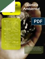 Microsoft Word - Capítulo 8 - Química Ambiental