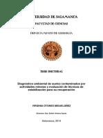 Diagnóstico Ambiental de Suelo Contaminados Por Actividades Mineras y Evaluación de Técnicas de Estabilización Para Su r