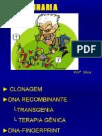 Biologia PPT - Engenharia Genética