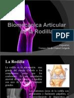 biomecanica rodilla.pptx