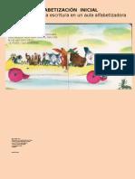 alfabetizacininicial1-110810152454-phpapp02.pptx