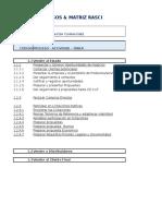 Ejercicio en Excel de matriz de procesos y matriz RASCI