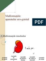 Malformațiile FINAL