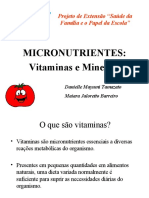 PALESTRA_VITAMINAS_E_MINERAIS.pdf