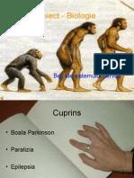 Proiect - Biologie pps