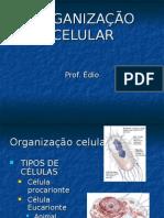 Biologia PPT - Org Celular e Ultra Estrutura