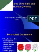 Complex Inheritance Patterns