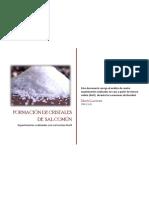 Formación-de-cristales-de-sal-común[1]