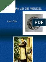 Biologia PPT - Primeira Lei de Mendel