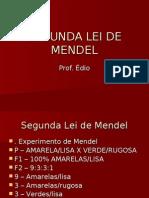 Biologia PPT - Segunda Lei de Mendel