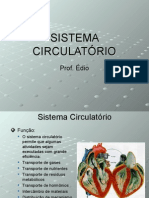 Biologia PPT - Sistema Circulatorio