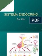 Biologia PPT - Sistema Endócrino